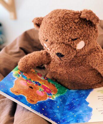 Natbjørnen Tjugga og kærlighedsblomsterne - Tjugga